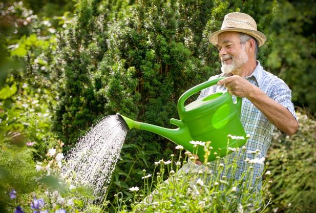 نحوه باغداری در فصل بهار